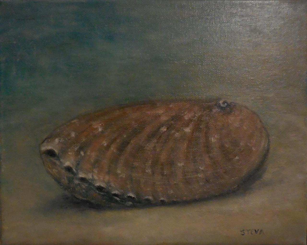 Ormeau échoué, huile, 30x24 cm, 2016,cp