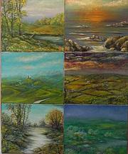 Plaidoyer pour la nature en 6 tableaux , collection particulière