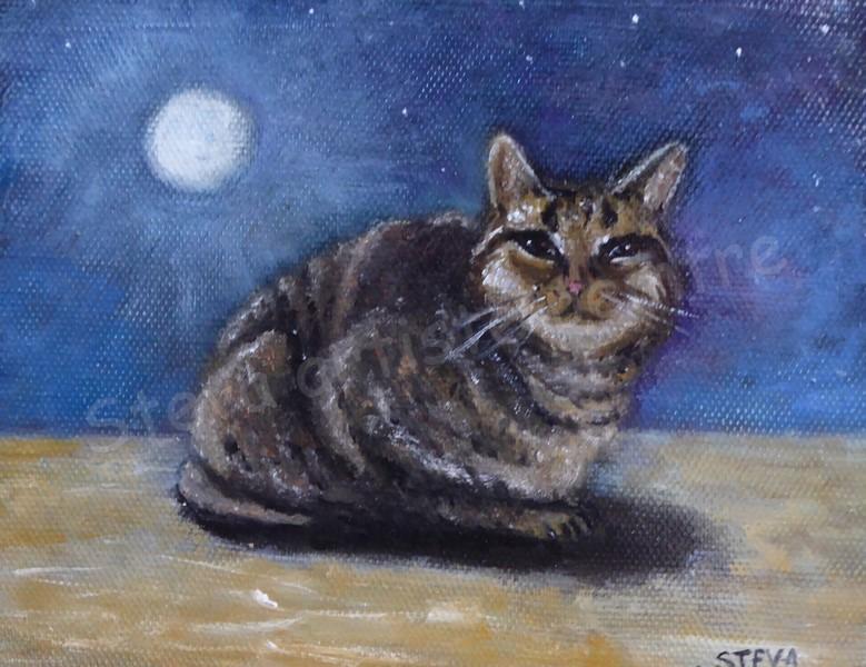 Le chat au clair de lune