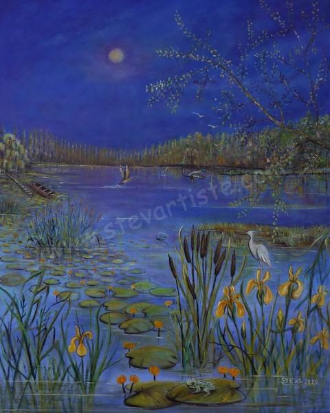 L' étang, la vie!