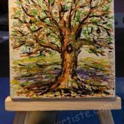 Steva arbre 2